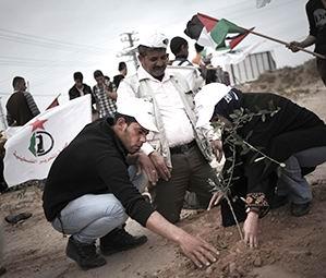 """Filistinliler, """"Toprak Günü""""nde Ayakta"""