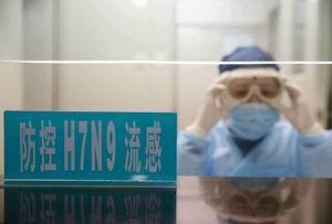 H7N9 Virüsünden Ölenlerin Sayısı Artıyor