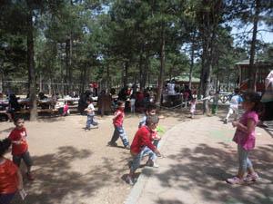 Özgür Çocuk Evi Öğrencileri Piknikte Buluştu