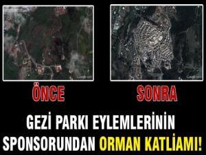 Taksimcilerin Sponsorundan Orman Katliamı