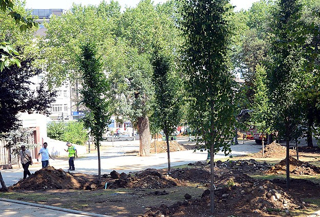 Gezi Parkına 100 Yetişkin Ağaç Dikildi