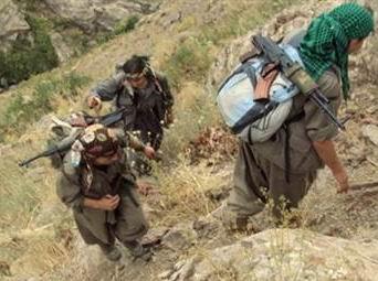 PKK'lıların Yarısından Fazlası Gitti