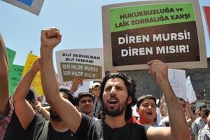 Diyarbakır'dan İhvan'a ve Mursi'ye Bin Selam
