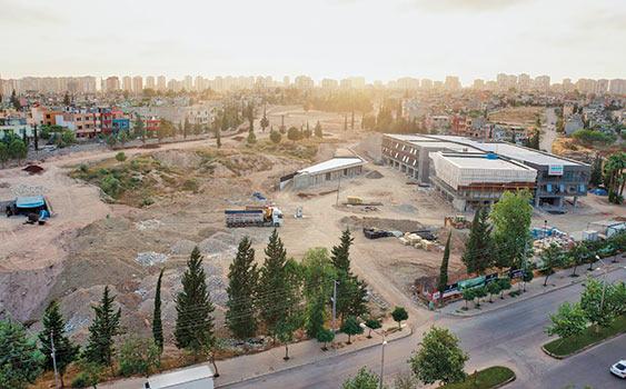 Çukurova'da CHPli Belediye İçin 500 Ağaç Kesti