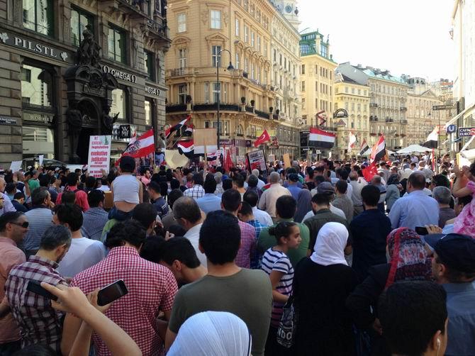Viyana'da Mısır'daki Katliam Protesto Edildi