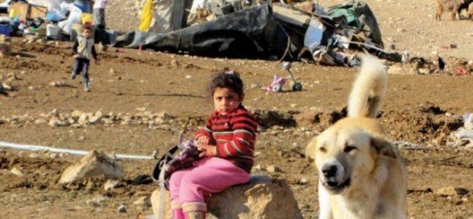 El-Fevvar Mülteci Kampı'nda UNRWA'ya Protesto