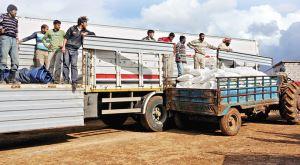 Fatsa Müftülüğü'nden Suriye'ye 6 Tır Yardım Gönderildi