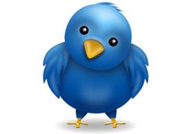 Twitter Kuşu Zamanın Ebabil Kuşu Olabilirmiş!