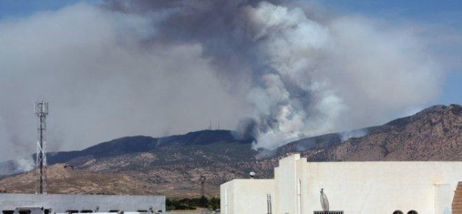 Cezayir'de Kuruluna Pusuda 11 Asker Öldü