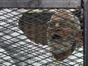 Bedii: Mısır Halkını Hiç Kimse Köleleştiremez