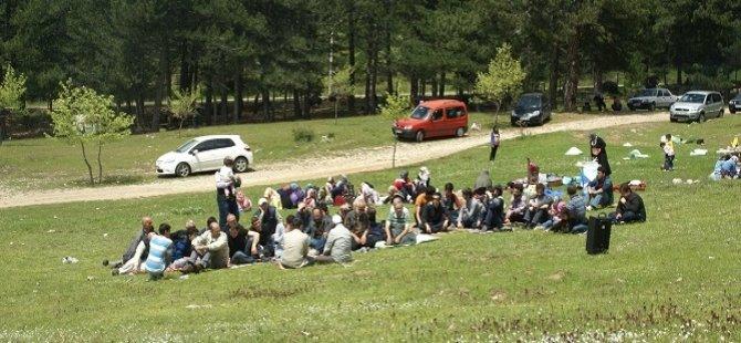 Bursa Özgür-Der Uludağ'da Piknik'te Buluştu
