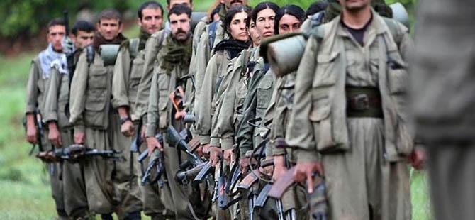 PKK'nin Bölge Sorumlusu 2 Kişi Yakalandı