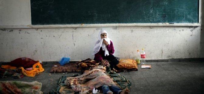 Gazze'de Şehit Sayısı 541'e Yükseldi