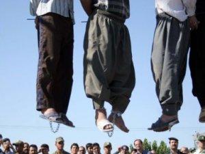 Irak'ta Şii Gruplar 15 Sünni'yi Astı