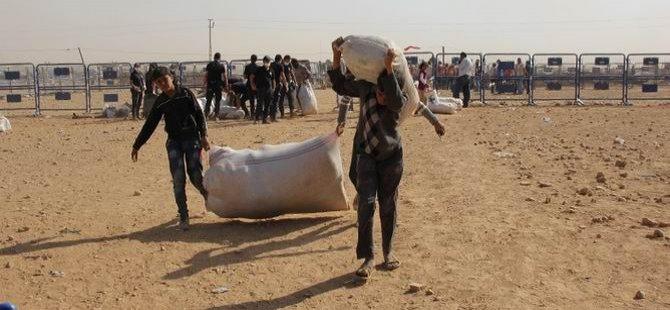 Kobani'den Gelenler İçin Kış Hazırlığı