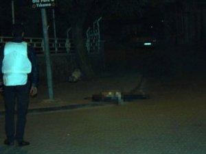 Bingöl'de 2 Polisi Öldüren PKK'lılar Öldürüldü