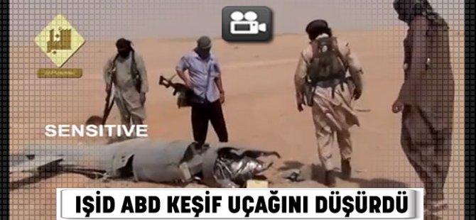 IŞİD ABD Keşif Uçağını Düşürdü