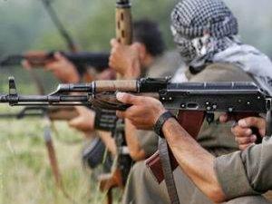 PKK Siirt'te Üç Kişiyi Kaçırdı