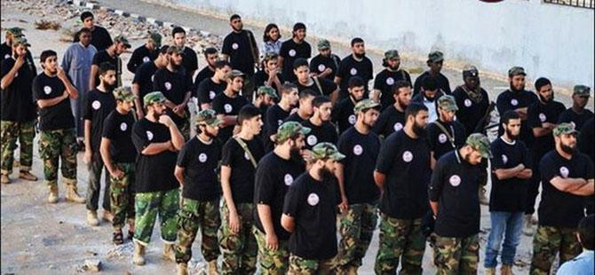 Batılı Ülkelerin Ensarü'ş Şeria Rahatsızlığı