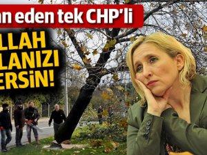 CHP'nin Ağaç Katliamına İsyan Eden Tek CHP'li