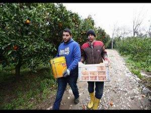 Antalya'daki Suriyeliler Gitmek İstemiyor