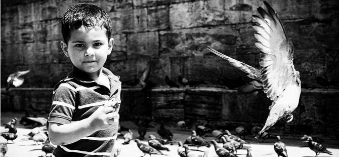 """Kuş Olsam, Halep'e Uçmak İsterdim"" (Fotoğrafya)"