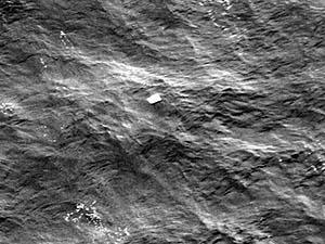 Java Denizi'nde 6 Ceset Bulundu