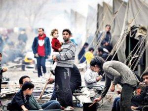 Avrupa İçin Mesleğin Yoksa Yaşam Hakkın Yok