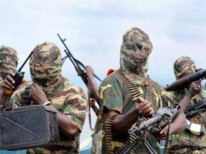 Boko Haram'ın IŞİD'e Biat Ettiği İddia Edildi