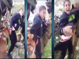 Filistinli Çocuğa Köpek İşkencesi! (VİDEO)