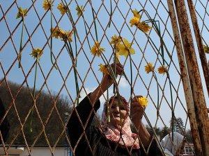 Srebrenitsalı Kurbanlar Unutulmadı