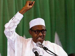 Nijerya'da Müslüman Partinin Seçim Başarısı