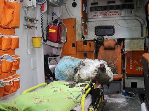 Yüksekova'da Ambulansa Molotof Attılar