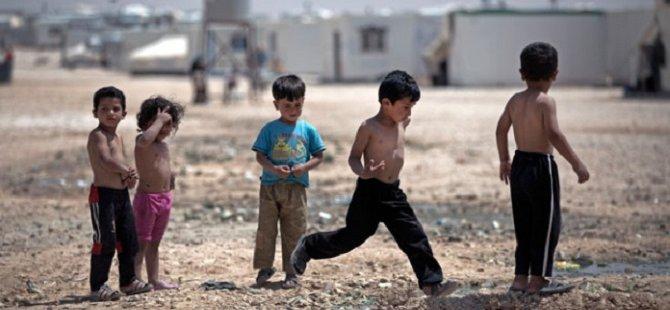 Halep'te Zorlu Yaşam Mücadalesi