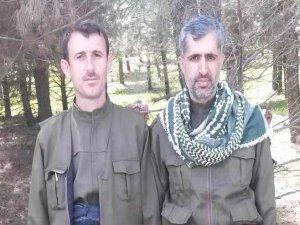 PKK/HDP'li Çeteler HÜDA PAR Mensubu 2 Müslümanı Katletti