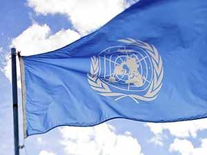 BM Silah Göndermeye Karşı; Bırakalım Ölsünler!