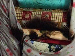Şırnak'ta Yine HÜDA-PAR'a Saldırı