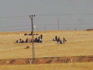 'Tel Abyad'taki Türkmen Köyleri YPG Tehdidinde'