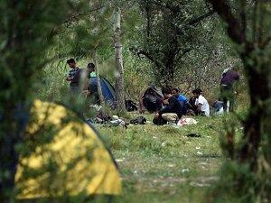 Avrupa'ya Göçmen Duvarı