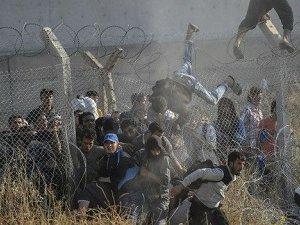 Tel Abyad/Kobani... Derdini Anlatamayan Devlet