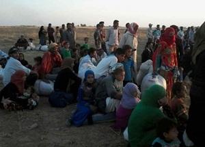 """""""PYD/PKK 10 Binden Fazla Türkmen'i Yurdundan Etti"""""""