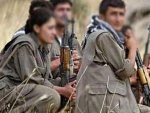 Tepkiler Gelince PKK Yine Çark Etti