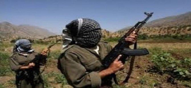 PKK'lılar Minibüs Şoförünü Öldürdü