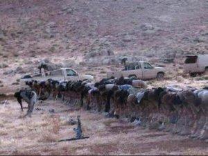 Bayırbucak Türkmenleri ve Milliyetçi Vicdansızlık