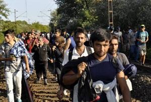 Almanya 800 Bin Mülteciyi Kabul Edecek