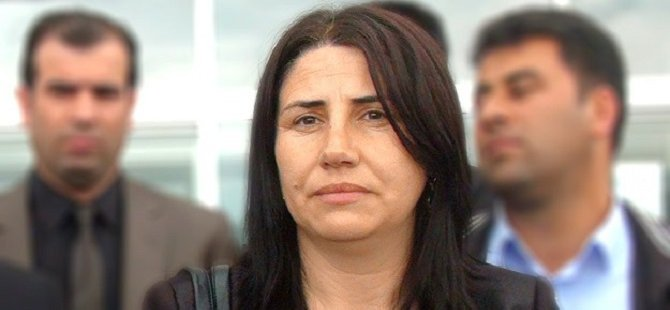 HDP'li Vekilin PKK'ya Erzak Götürdüğü İddiası