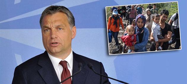 Faşist Başbakandan İnsanlığı Utandıracak Açıklama