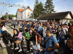 Sığınmacılar Hırvatistan Sınırına Yöneldi