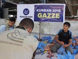 Kurbanlarımız Gazzeli Muhtaçlar İçin Gazze'de Kesildi