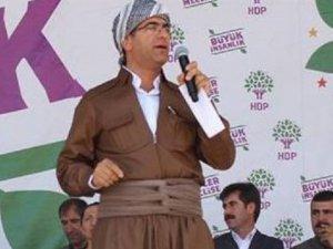 HDP'li Vekilin Eleştirisi 'PKK'lı Trolleri' Çıldırttı